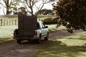 Ute with empty crates