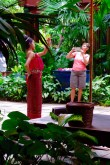 Ruth responds to the Thai dancing by giving a rendition of the tourist camera dance