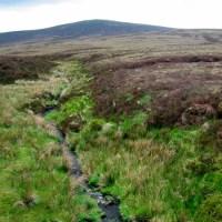 River Liffey.  Part 1 Freshwater