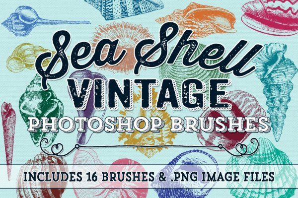 Vintage Sea Shell Photoshop Brushes