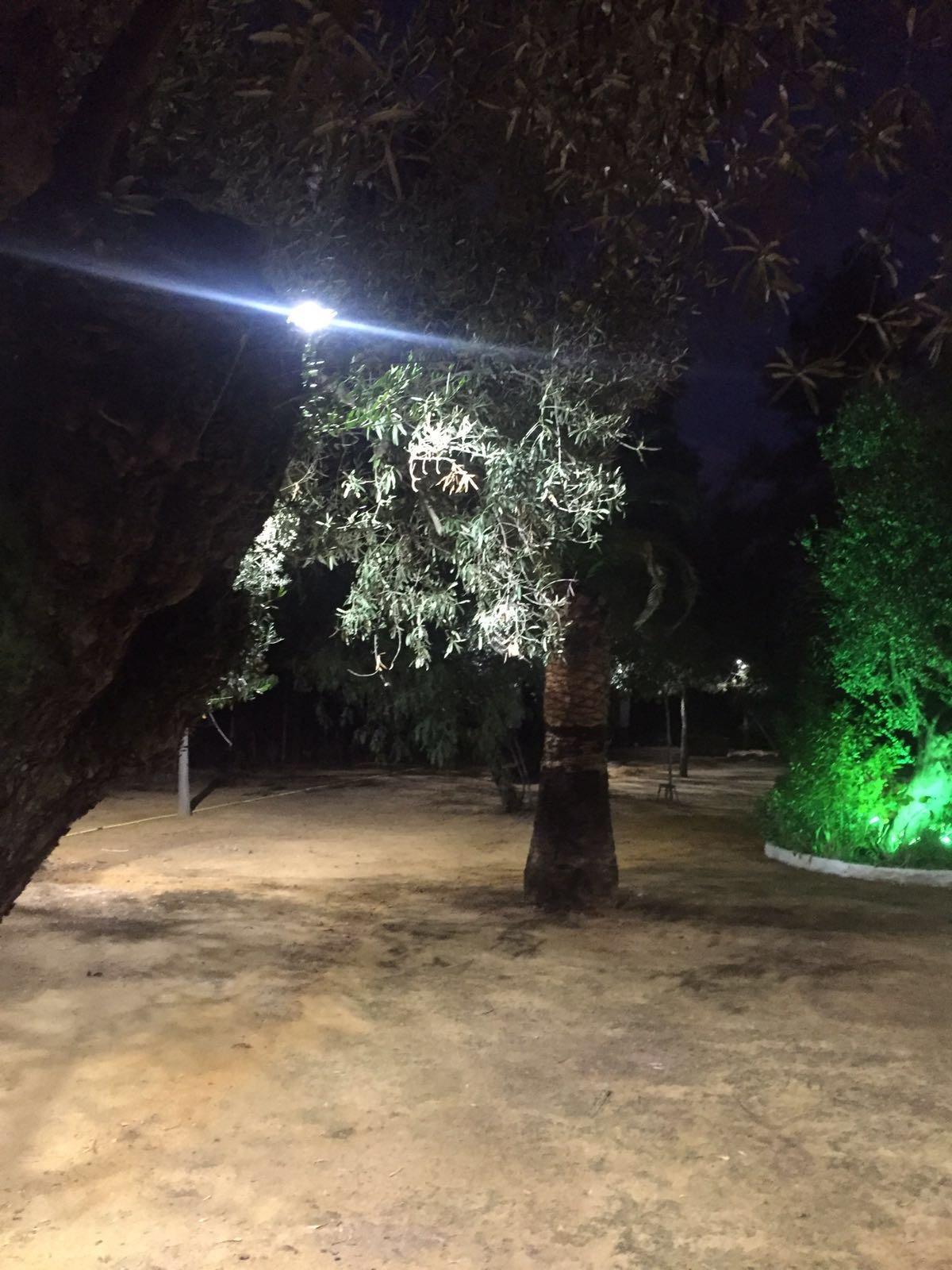 iluminacin para jardines y eventos