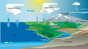 Satellites track Earth's water movements to help plete