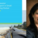 Understanding Climate and Disaster Resilient Transport in Small Island Developing States