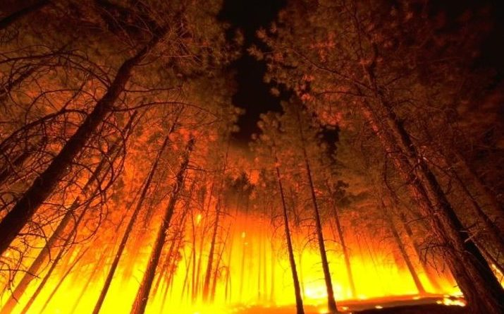 Adding fuel to the fire climate change is exacerbating western adding fuel to the fire climate change is exacerbating western wildfires publicscrutiny Images
