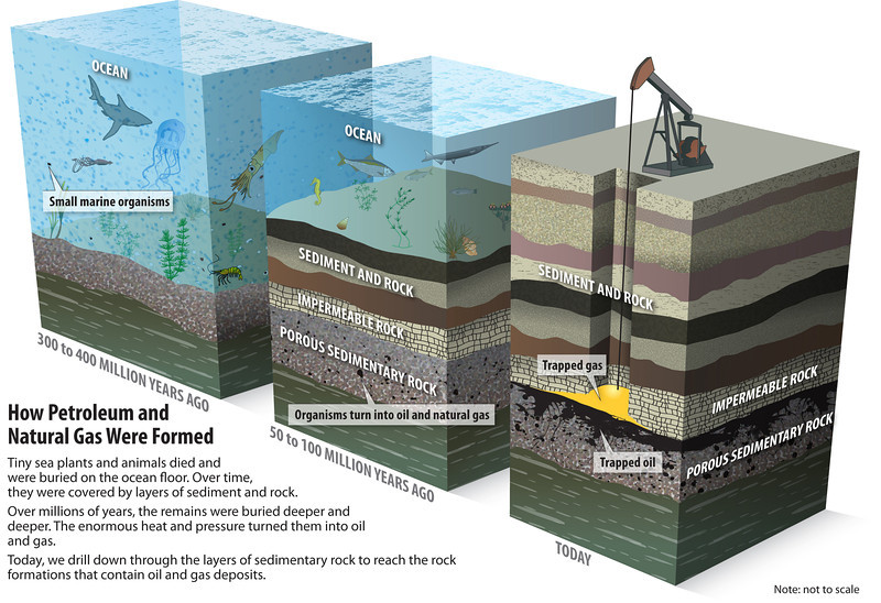 Fig. 7: Oil and natural gas. The conditions for oil formation were less unique, however it is still regarded as a non-renewable fossil fuel because the process takes millions of years—far faster than oil is being extracted. Not all marine animals become oil, however. The vast bulk of them are are metamorphised into limestone. Today, limestone is used to make cement, which is one of the major contributor to greenhouse gasses.