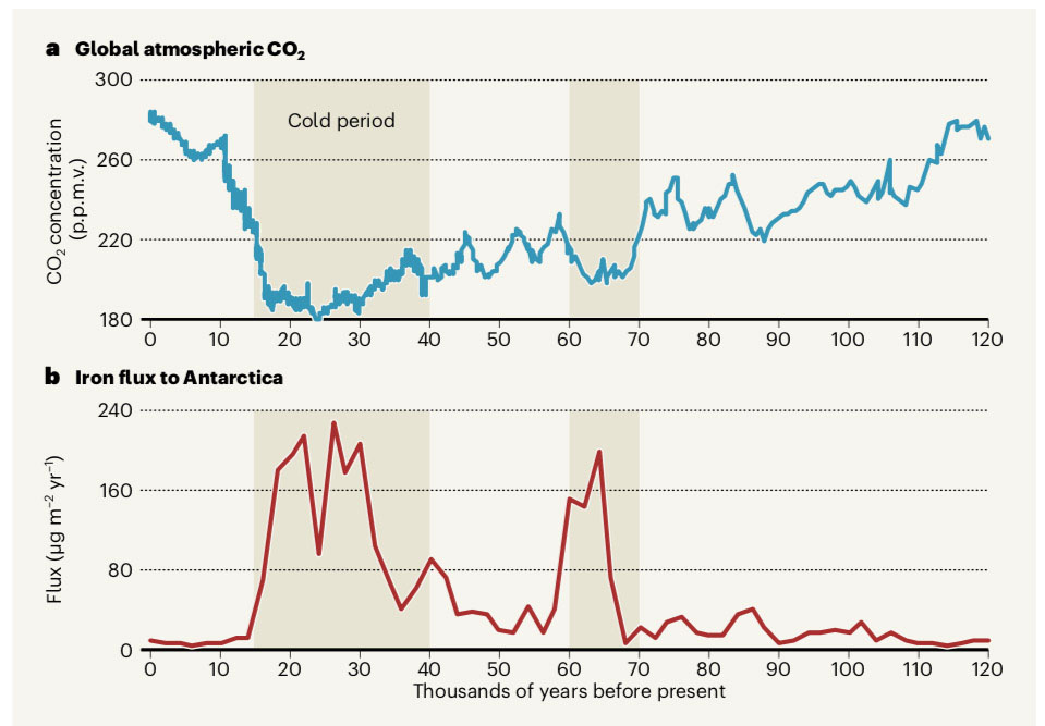 Fig. 1: As iron in the ocean increased (red line), it fertilised the phytoplankton, which withdrew large quantities of CO₂ (blue line) from of the atmosphere.