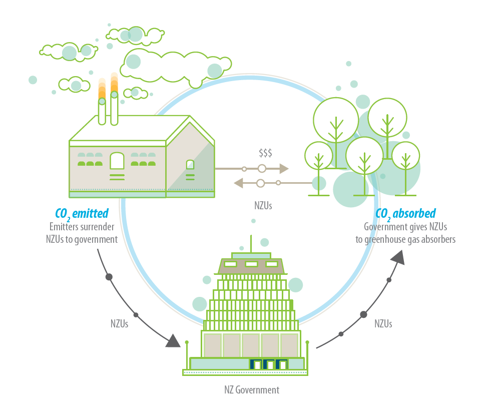 Fig. 1: The New Zealand Emissions Trading Scheme (ETS) is based around a trade in units that represent a tonne of carbon dioxide equivalent (CO2-e). Businesses that emit greenhouse gasses have to surrender these units to the Government annually, while those who remove rather than emit greenhouse gases (e.g. plant and grow forests) receive units. These units can be bought, sold, or traded. (Image: Environmental Protection Authority Te Mana Rauhi Taiao)