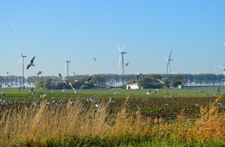 Wind Power Is Collapsing In Germany