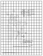 Gridded Map.
