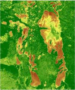 Lake_Winnipeg_biome