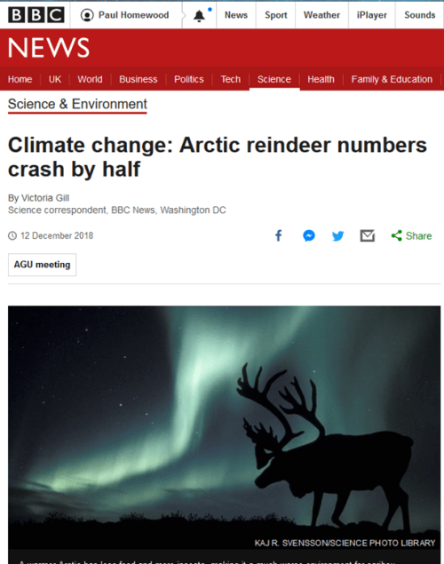 Reindeer Games: Is Climate Change Behind The Arctic Caribou's Decline?