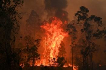 arson fire australia