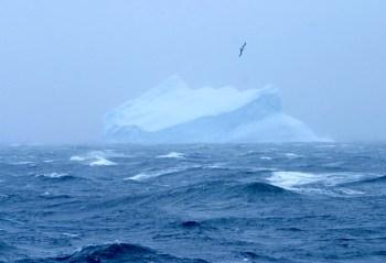 southern antarctic ocean