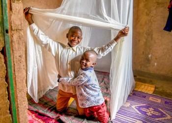 malaria tent
