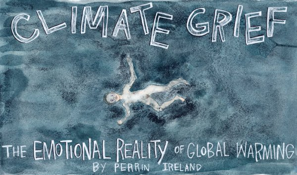 'Climate Grief, the emotional reality of global warming'<br /> Artist: Perrin Ireland