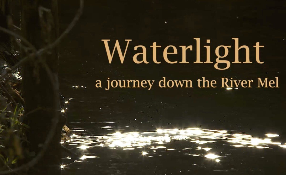 The Waterlight Project