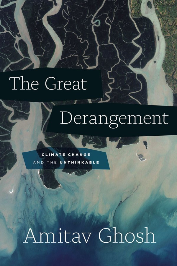Cover to 'The Great Derangement' by Jill Shimabukuro