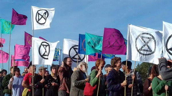 Rising Tide of XR flags. Photograph: Linda Gordon