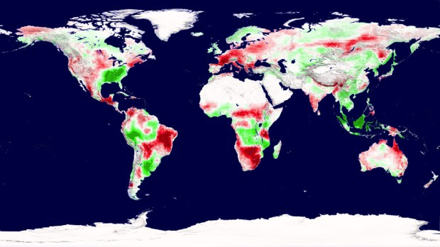 A snapshot of Earth's plant productivity in 2003 shows regions of increased productivity (green) and decreased productivity (red). Tracking productivity between 2000 and 2009, researchers found a global net decrease due to regional drought. Credit: NASA Goddard Space Flight Center Scientific Visualization Studio