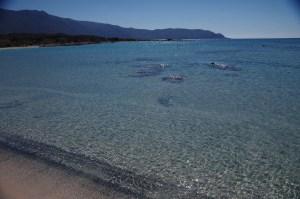 Lazurowe wybrzeże Elafonisi