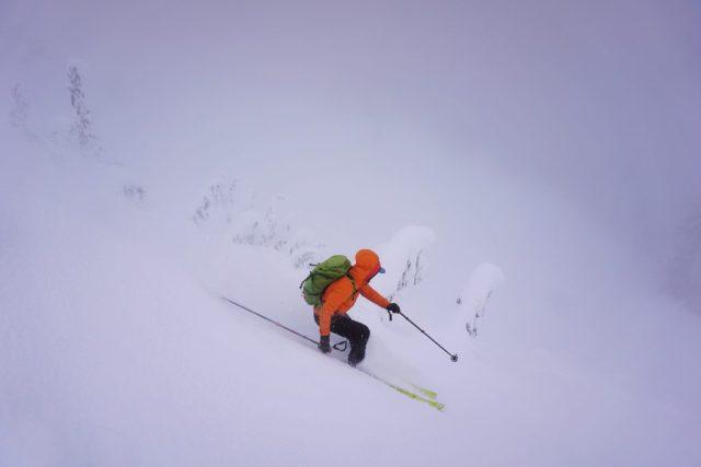 Lichtenberg Fog