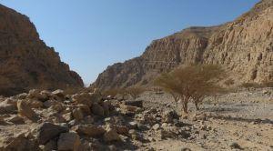 Roadside sport climbing, Ras Al Khaimah, Émirats 32