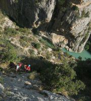 Asterix a la Peña del Santo Cristo, Olvena, Espagne 8