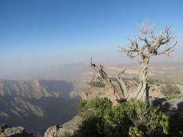 Qarn al Ghamaydah, Jebel Shams, trek W4, Oman 9