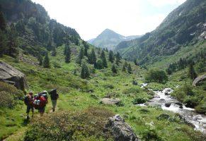 Mérens-les-Vals à Orlu, Ariège, Pyrénées, France 2