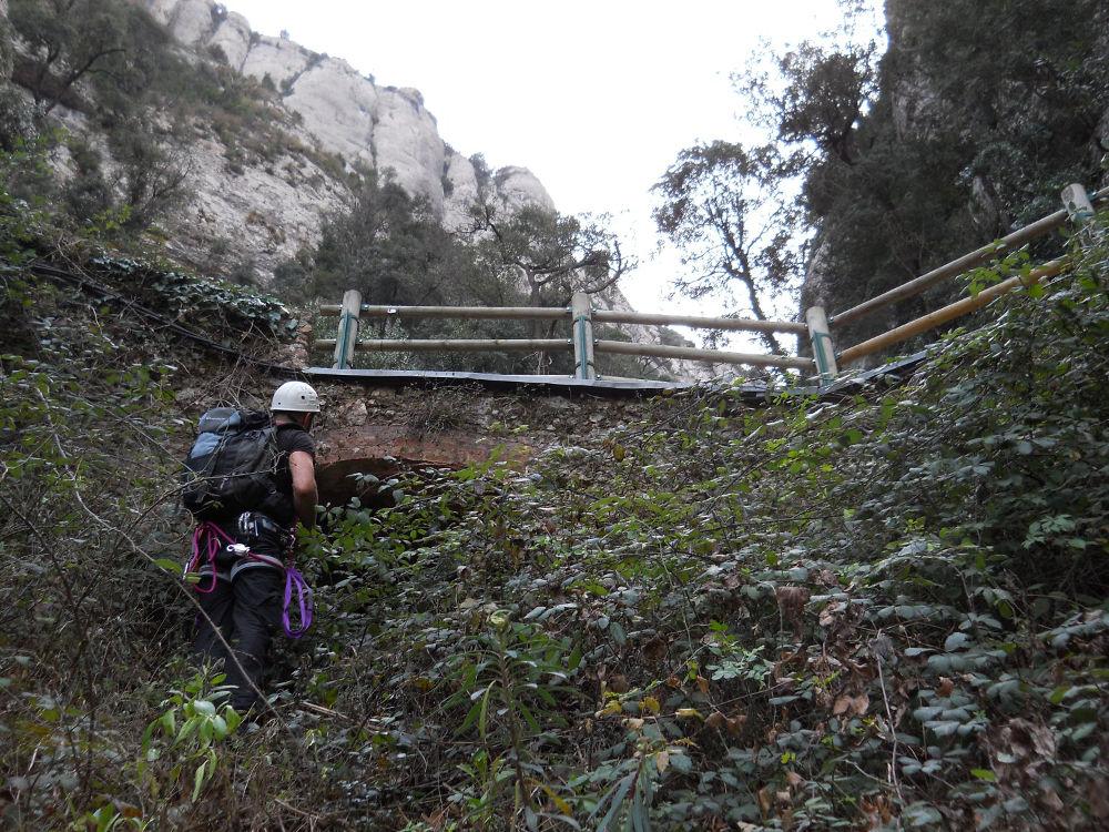Torrent de Vallmala, Montserrat 25