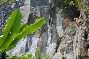 Butterfly Valley, Sport Climbing, Cat Ba Island, Vietnam 25