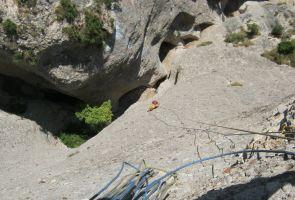 Drac Gos a l'agulle de Can Jorba, Montserrat, Espagne 10