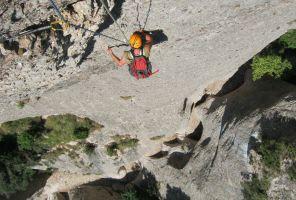 Drac Gos a l'agulle de Can Jorba, Montserrat, Espagne 12
