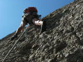 Drac Gos a l'agulle de Can Jorba, Montserrat, Espagne 16