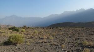 W8, Bilad Seet à Sharaf Al Alamein, Wadi Bani Awf, Oman 2