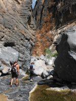 Snake Gorge Canyon, Jebel Akhdar 73