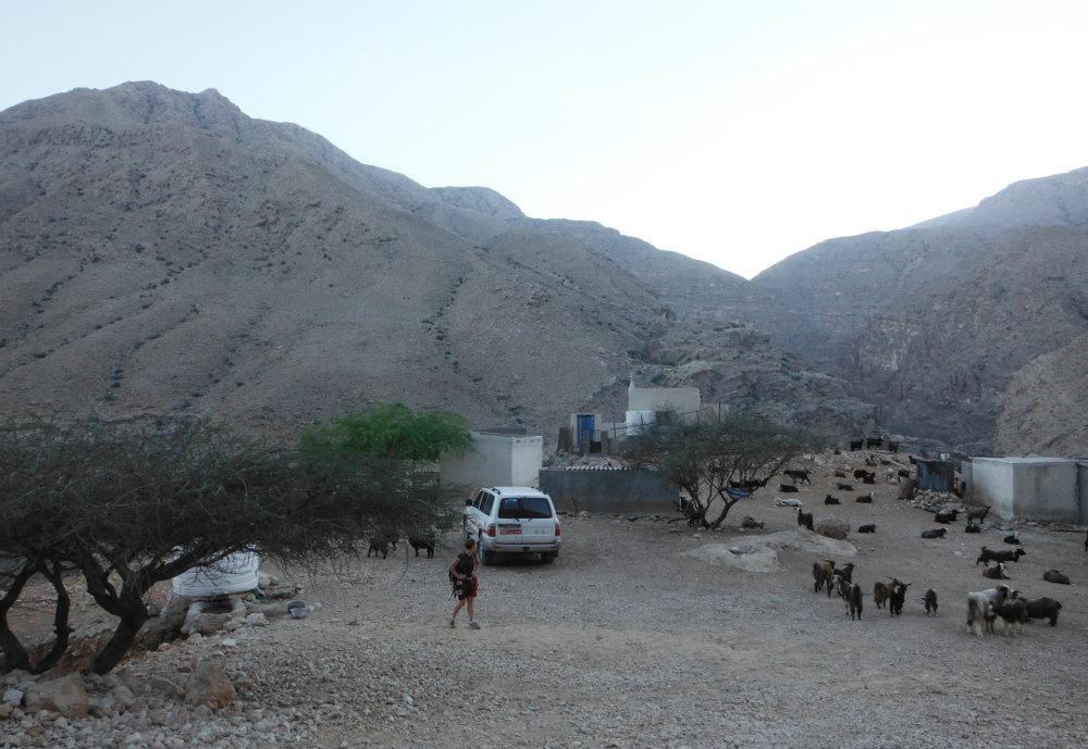 Wadi Ta'ab, Hajar Oriental 90