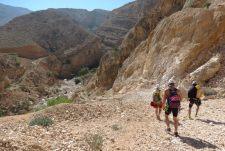 6. depuis le parking vers le wadi