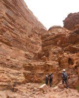 Thamudic route au Jebel Rum, Wadi Rum, Jordanie 8