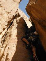 Le Bal des Chameaux, Barrah Canyon, Wadi Rum, Jordanie 21