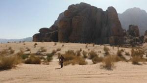 Le Bal des Chameaux, Barrah Canyon, Wadi Rum, Jordanie 13