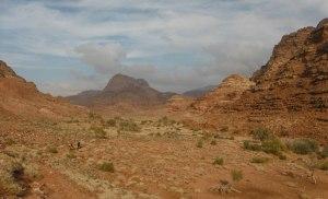 Wadi Tibn, Wadi Sabra, Petra, Jordanie 25