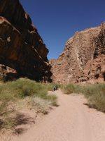 Rakabat Canyon, Jebel Um Ishrin, Wadi Rum, Jordanie 35