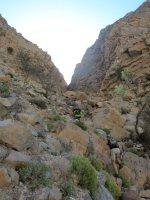 Leopard Canyon, Ras Al Khaimah 15