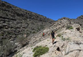 Leopard Canyon, Wadi Qada'a, Ras Al Khaimah, Émirats Arabes Unis 19