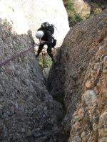Aresta Brucs a l'Arbret, Agulles, Montserrat, Espagne 12