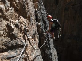 Snake Canyon, Jebel Akhdar 29