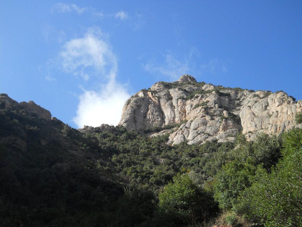 Torrent Fondo, Montserrat 17