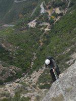 L'avi Trepador a la Codolosa, Montserrat, Espagne 19