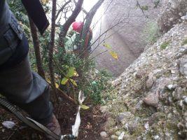 Canal del Ninet, Montserrat 20